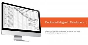 Magento web developer