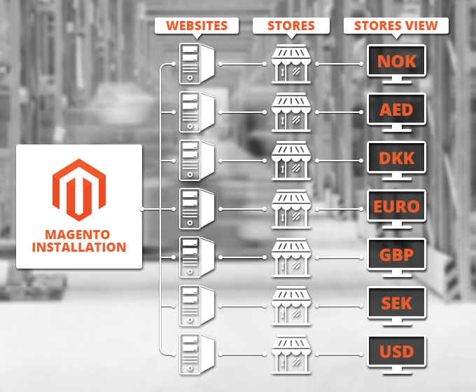 Magento multi-website functionality