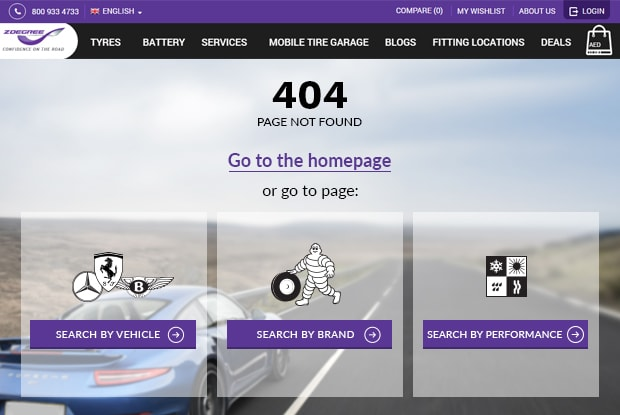 Search options on 404 page