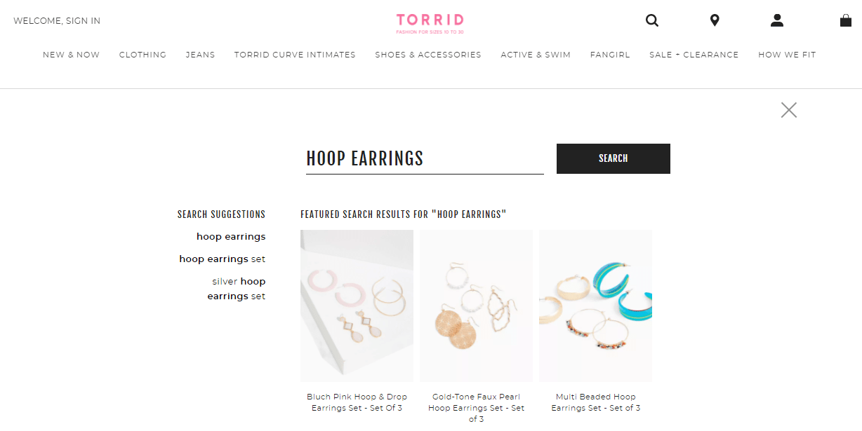 Torrid internal search